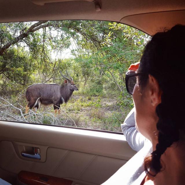 south african romantic honeymoon destinations
