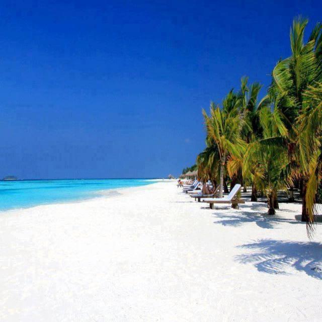 popular holiday destinations beech